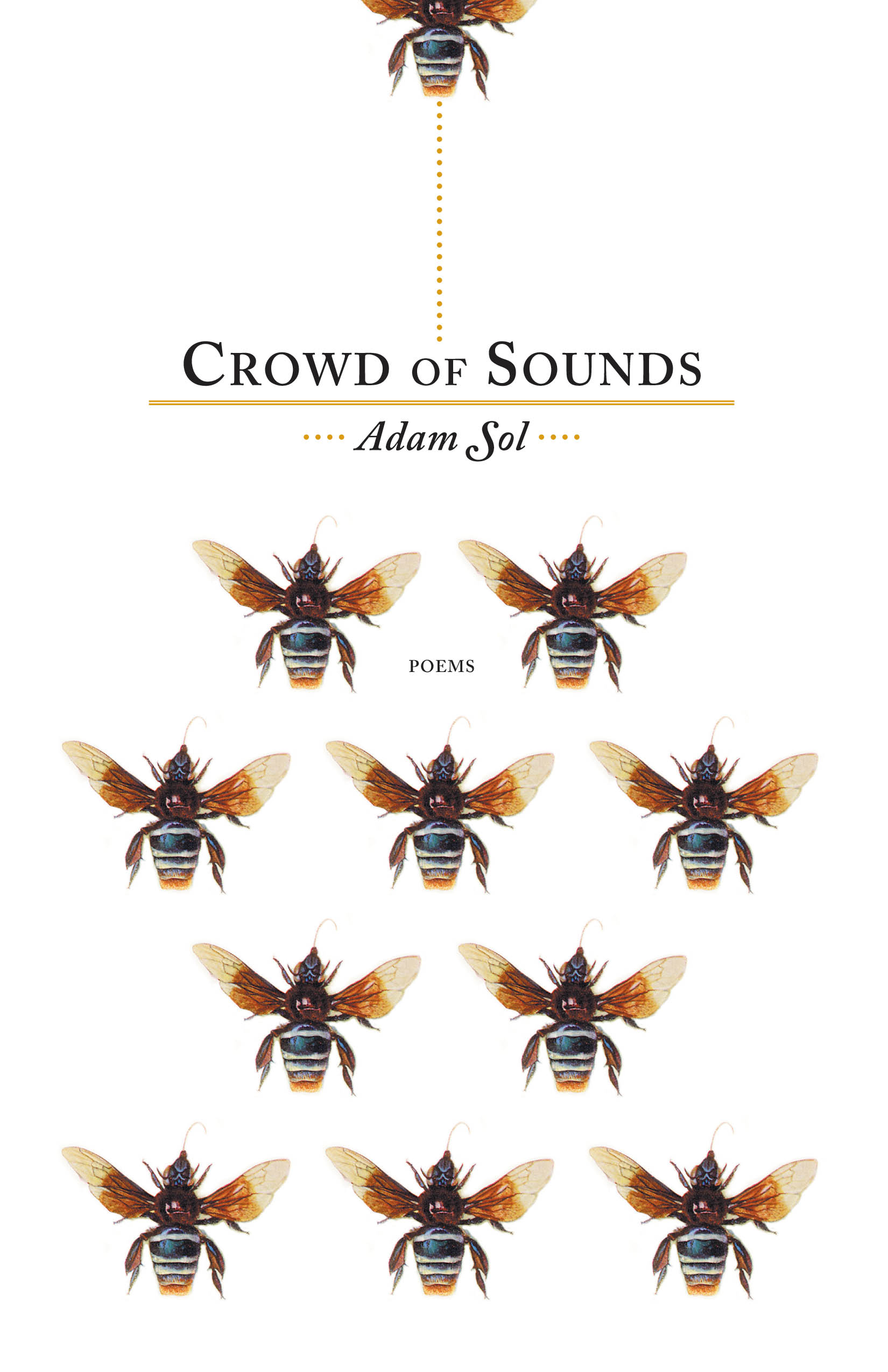 Crowd of Sounds by Adam Sol