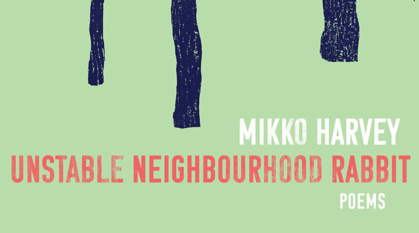 Unstable Neighbourhood Rabbit by Mikko Harvey